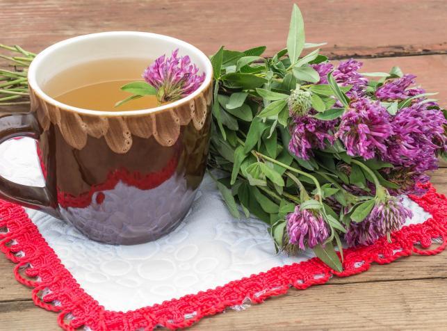 8440775-herbata-z-czerwonej-koniczyny-643-476.jpg