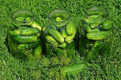 cucumbers-849268__340.jpg