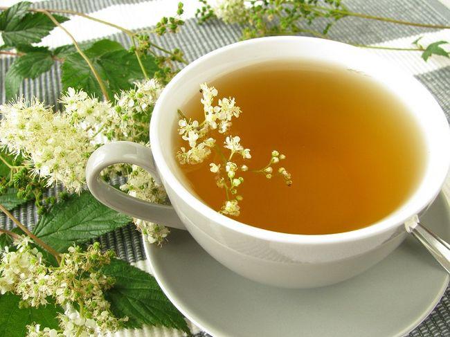 herbata-z-wiazowki-blotnej2663.jpg