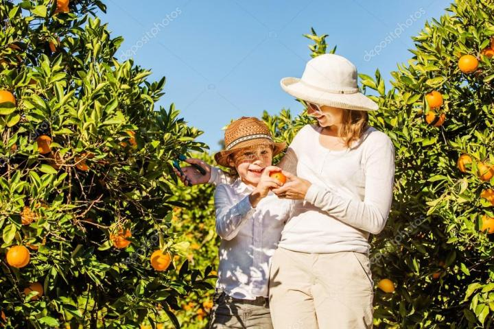 depositphotos_78385234-stock-photo-smiling-happy-mother-and-son.jpg