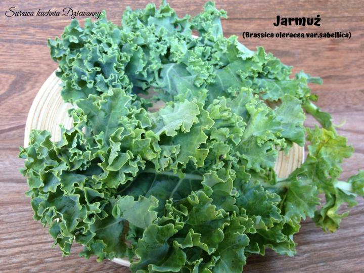Jarmuż (Brassica oleracea var. sabellica).png