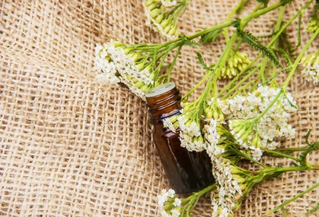 niezbedny-olej-krwawnikowy-mala-butelka_74760-55