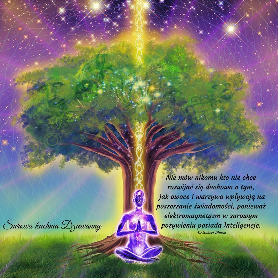 Nie mów nikomu kto nie chce rozwijać się duchowo o tym, jak owoce i warzywa wpływają na poszerzanie świadomości,ponieważ elektromagnetyzm w surowym pożywieniu posiada Inteligencje.